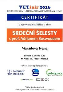 Certifikát šelesty
