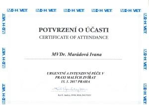 Certifikát Iva