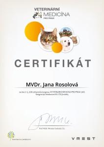 certifikaty_personifikace 49_01