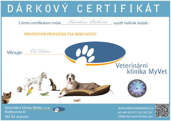 certifikat_sluzby_sample_small